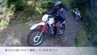 大分県 林道走行(2)