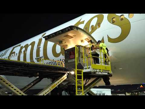Emirates SkyCargo transports first batch of Pfizer-BioNTech COVID-19 vaccines | Emirates SkyCargo