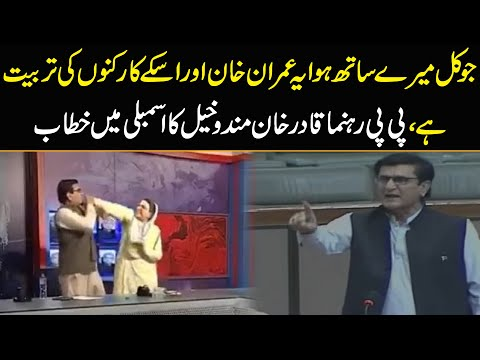 PPP leader Qadir Khan's reaction after getting hit by SACM Firdous Awan   National Assembly