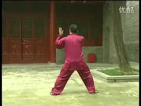 陳氏太極拳老架一路全套背面演練 ---- 張東武 - YouTube