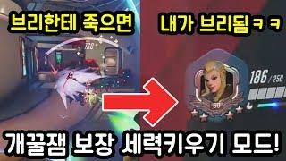 개꿀잼 보장합니다ㅋㅋㅋ 오버워치 세력키우기 모드!!!