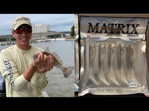 Fishing Under The Beau Rivage And New Matrix Shad!