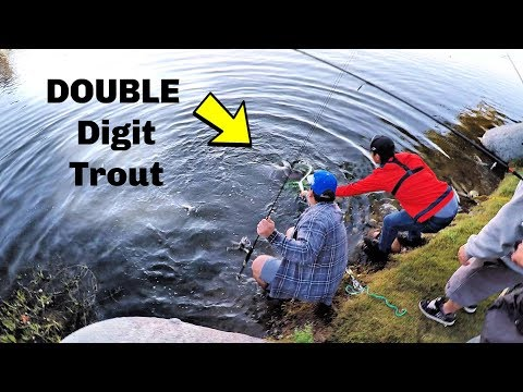 Trout Fishing At Santee Lakes Opener | LIMITS And Monster Trout