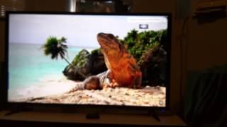 "Haier 4K  55E5500U 55""   LED TV  Review"