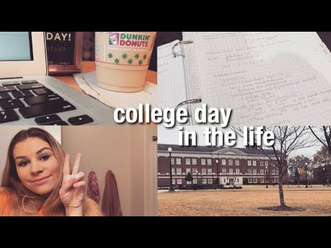 Chemical Engineering Student: Day in the Life