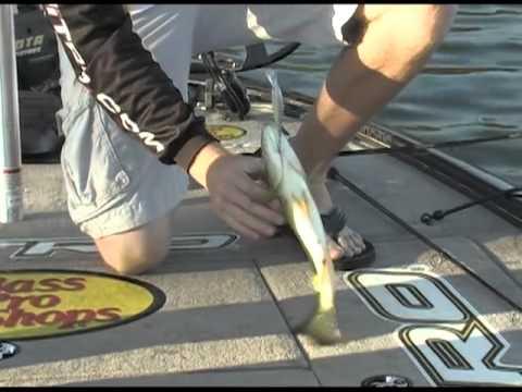 Fishing with johnny johnson saguaro lake az with josh for Johnny johnson fishing