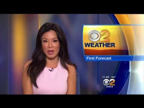Sharon Tay 2015/05/13 CBS2 HD