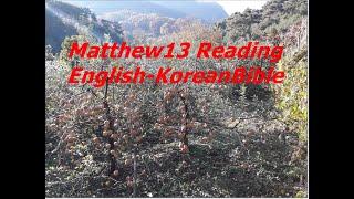 1,314KoreanBible 영어성경 통독 마태복음1…