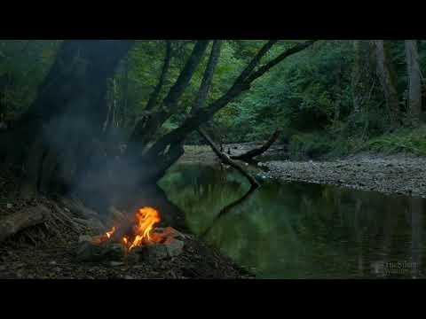 Ormanda  Kamp Ateşi Su Ve Kuş Sesi ,  Dinlendirici Orman Sesleri ( 4K ) Uzun Versiyon