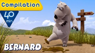 Download Bernard Bear | Nature COMPILATION | 40 MIN | Cartoons for Children | Full Episodes
