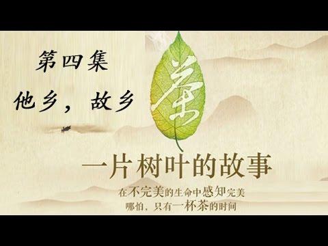 茶一片树叶的故事2_茶,一片树叶的故事 04 他乡,故乡 - YouTube