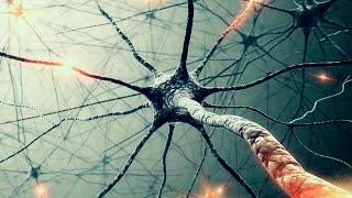 Масовая МАНИПУЛЯЦИЯ сознанием    зеркальные нейроны