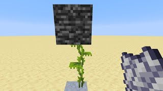 Breaking Bedrock With The NEW Dripleaves In Minecraft 1.17