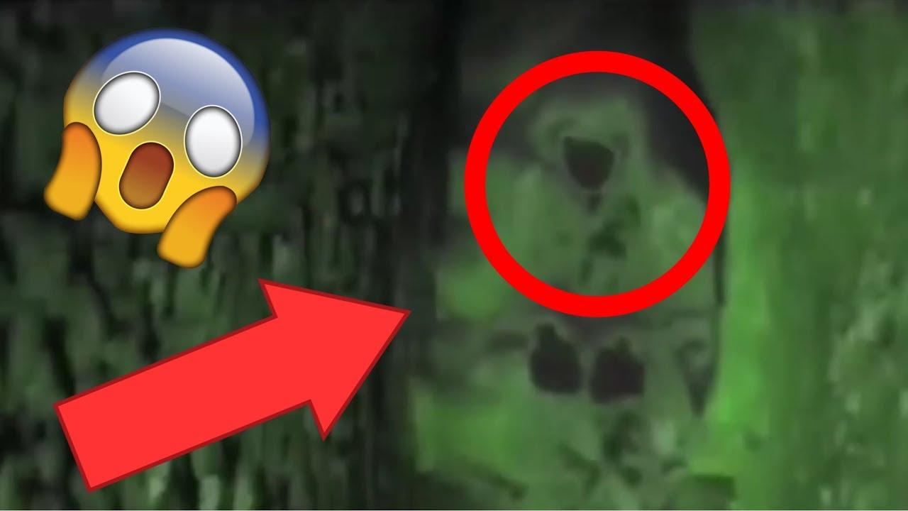 3 Extraños (Fantasmas) visto Moviéndose De Noche 😱