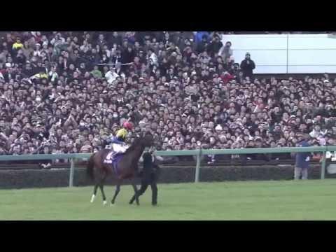 夏競馬には名馬の子供がデビューする。