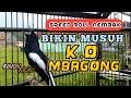 Pancingan Kacer Gacor Speed Roll Nembak Bikin Musuh Langsung K O Mbagong  Mp3 - Mp4 Download
