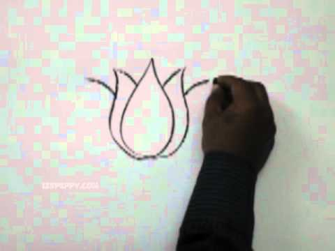 How To Draw A Lotus Youtube