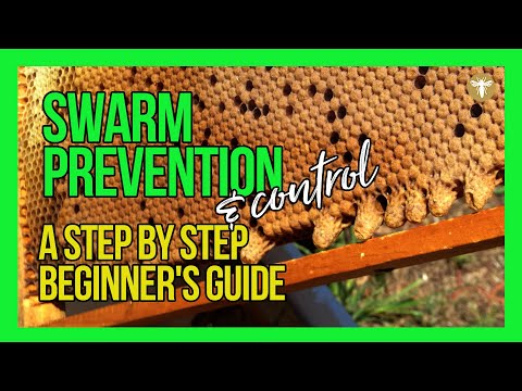 How To Prevent Swarming Of Bees | Learn Step By Step With Bruce White