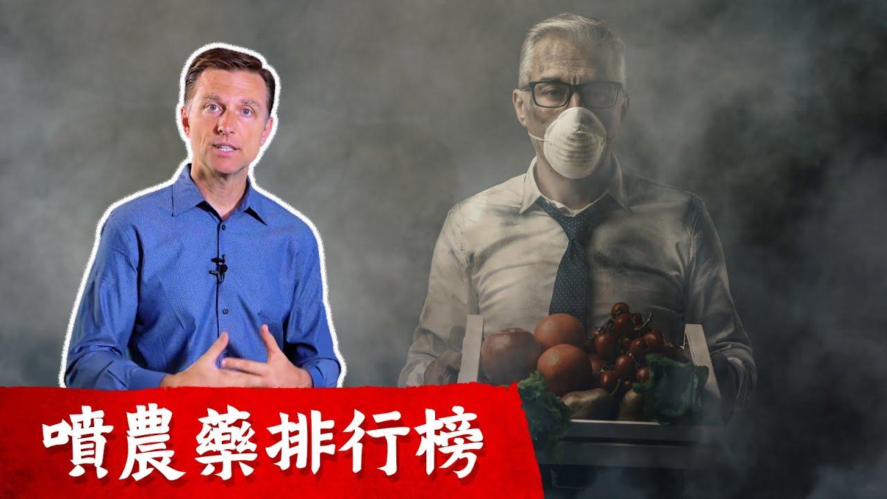 含農藥排行榜, 那些蔬菜買有機?怎麼買蔬菜,最省錢,柏格醫生dr berg