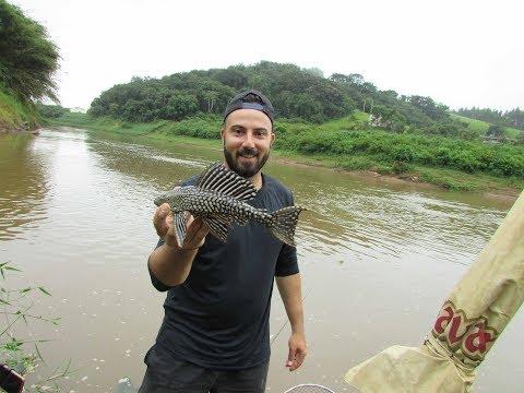 É cada peixe que nos pega-Pescaria no rio verde sul de Minas