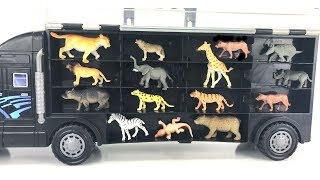 Animal Transporter/ZOO Safari Toys/Real Animals videos/Veterinary/Toy review For Children
