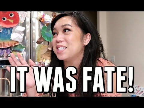 IT WAS FATE! I CAN'T BELIEVE IT! - November 18, 2017 -  ItsJudysLife Vlogs