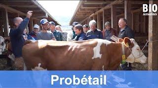 «ProBétail» – Une offre de vulgarisation de et pour les pros de la production animale (Mai 2015)