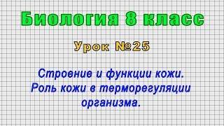 Биология 8 класс (Урок№25 - Строение и функции кожи. Роль кожи в терморегуляции организма.)