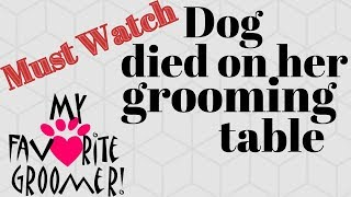 Dog died on her grooming table (Discussion - get the DogUp Stand today)