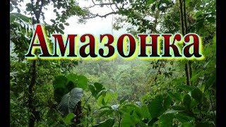 Мир природы. Амазонка  Колыбель жизни. Документальный фильм о природе