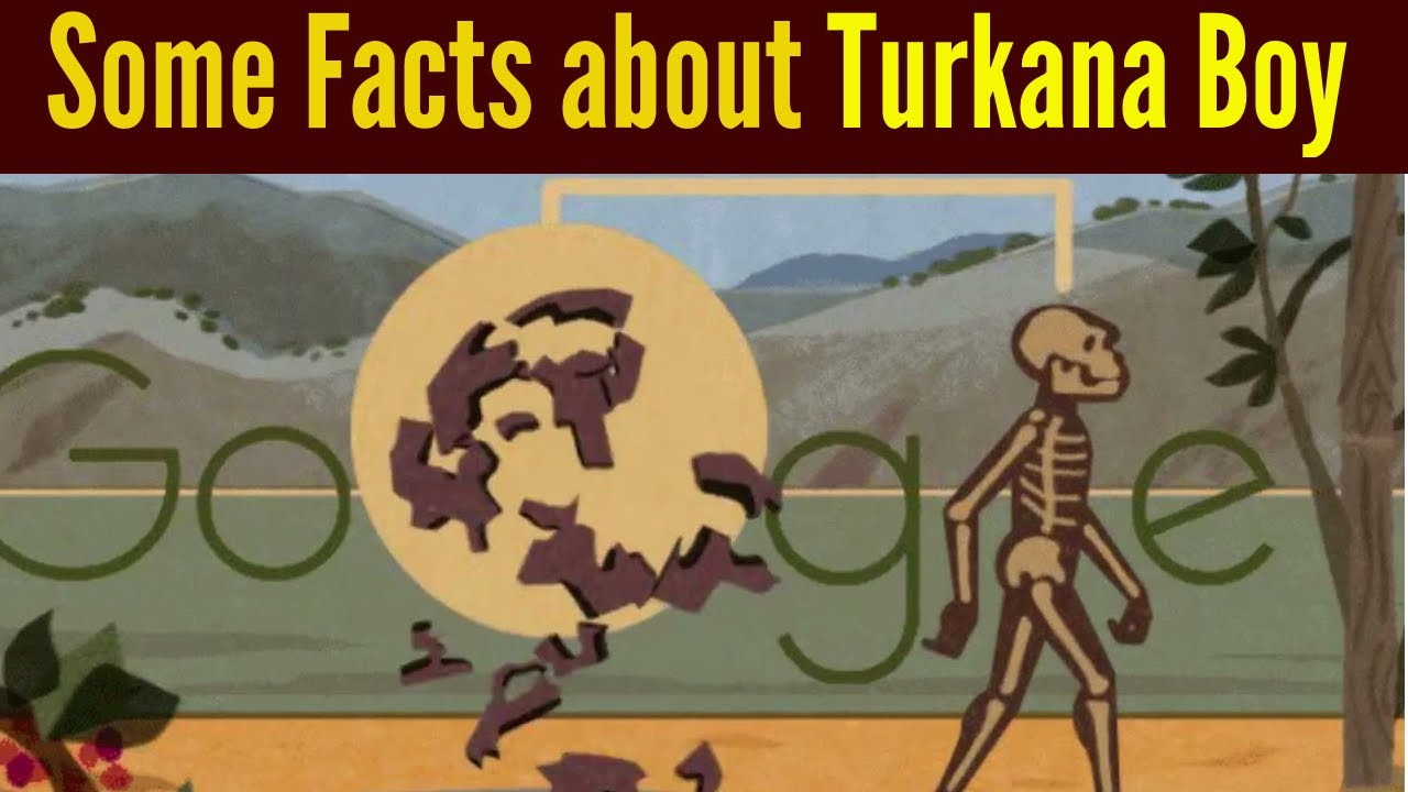 Turkana Human Google Doodle: 5 Fast Facts to Know