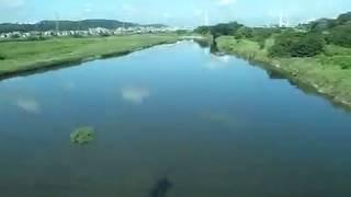 2019 京王ライナー 上り列車-イ Inbound Keio Line Window View 190907