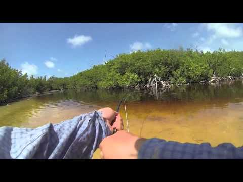 Fly fishing for tarpon Isle de Juventud, Cuba June 2013