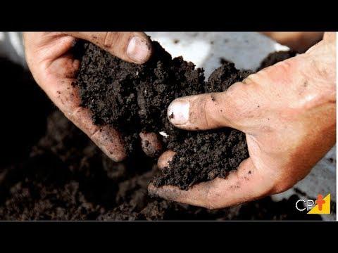 Clique e veja o vídeo Curso Produção de Mudas de Café em Saquinhos e Tubetes - Preparação do Substrato - Cursos CPT