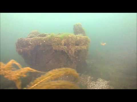 Scuba Diving, Lake Geneva, Wisconsin, VW Bug