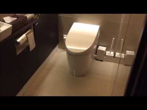 Japanese Toilet / Toto Washlet