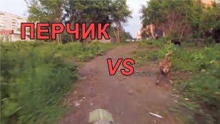 Перцовый баллончик Контроль-УМ против Собак - 6., Перец. г.Омск Город глазами велосипедиста #164