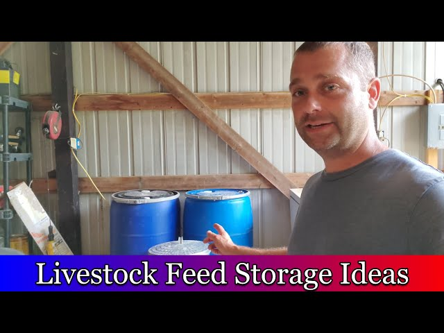 Feed Storage Ideas for Homesteaders and Hobby Farms