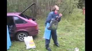 Н. В. Гоголь танцует в лесополосе с грибами