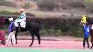 笠松競馬 女性騎手 宮下瞳 2