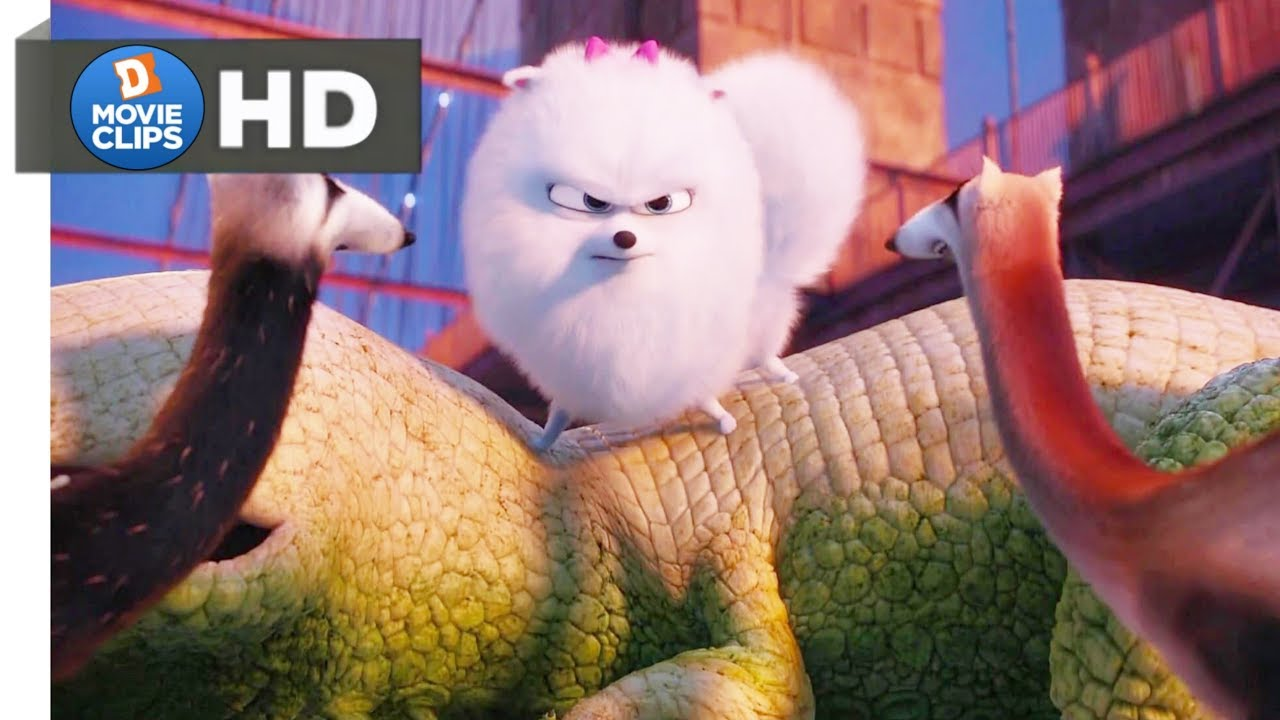 Download The Secret Life Of Pets Hindi (11/14) Gidget Saves Max Scene MovieClips