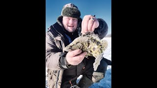 Хлопушки холод новый год Зимняя рыбалка