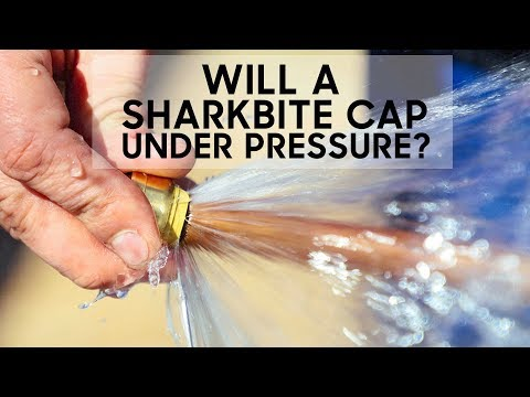 Will a Sharkbite Stop a Full Pressure Leak?
