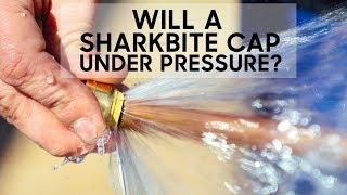 Will a Sharkbite Stop a Full Pressure Leak?