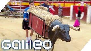 Dieser 14-Jährige möchte Stierkämpfer werden | Galileo