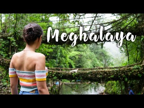 Backpacking In Meghalaya | NorthEast India Trip | Sohra, Living Roots Bridge | Tanya Khanijow