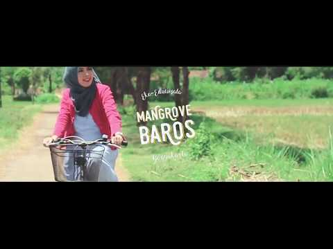 Video Mangrove Baros