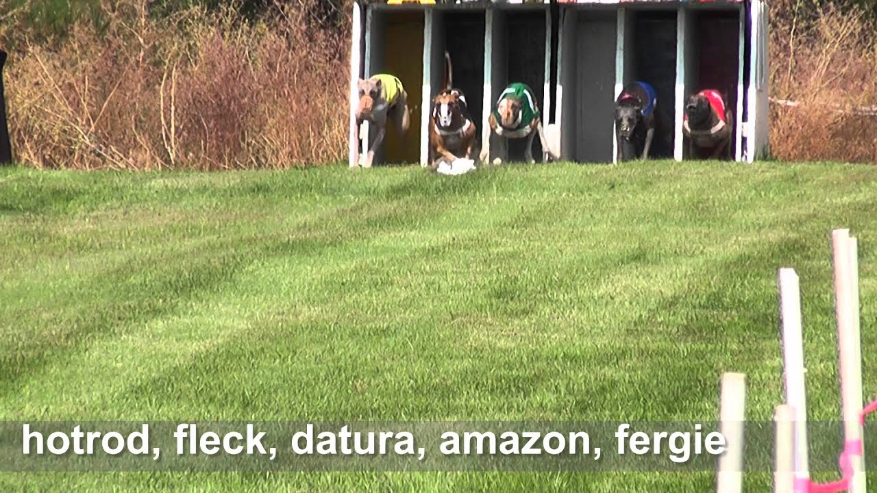 NAWRA NATIONALS, September 22, 2012, Goldendale, WA