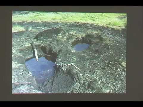 Charla 1 de 2. Mamíferos fósiles en depósitos de asfalto de Venezuela