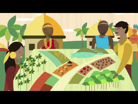FAO, Indigenous Peoples and the Free, Prior and Informed Consent (FPIC)